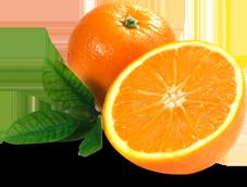 Naranjas Ecológicas Masverde